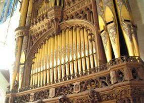 photo of organ
